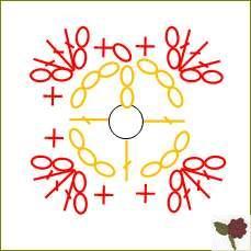 diagramme Fleur de type 1 à 4 pétales