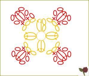 diagramme Fleur de type 2 à 4 pétales