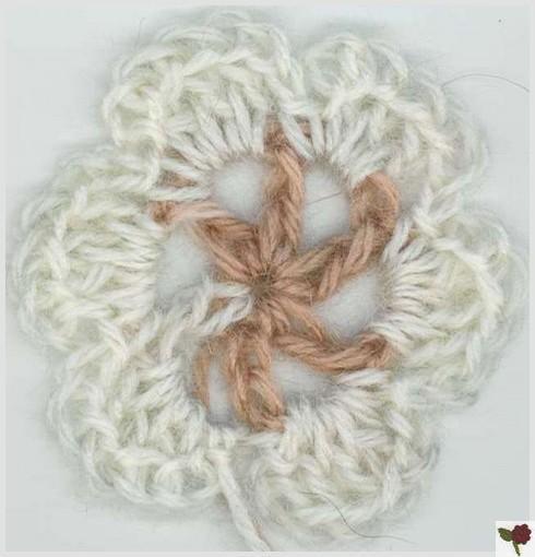 Fleur de type 1 à 6 pétales