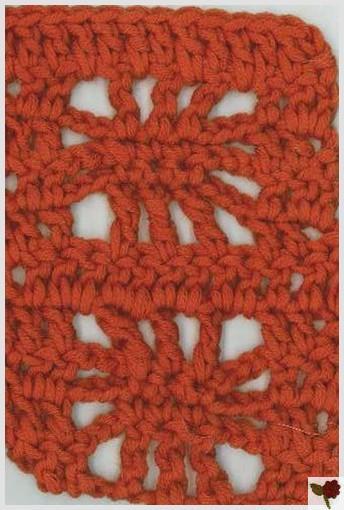 Point de toile d'araignée 3 - Mérina - Cheval Blanc